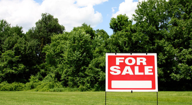 land-for-sale-10054226_1200pxW.550b7136-665x365